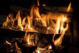 Brennwert Holz